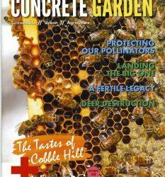 Growing the Concrete Garden