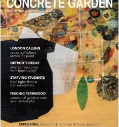 Concrete Garden wants you (or your students)